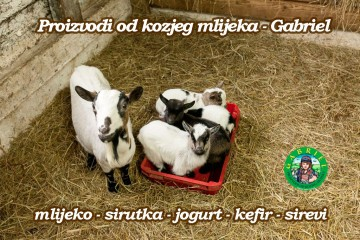 Ponovno u ponudi - proizvodi od kozjeg mlijeka